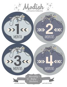 FREE GIFT Tribal Monthly Baby Stickers Boy Baby Month by ModishCC