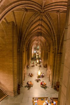 Pitt University, University Of Pittsburgh, Pittsburgh Pa, Stuff To Do, Things To Do, Great Buildings And Structures, Modern Buildings, Travel Usa, Travel Tips