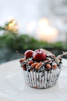"""Christmas tree for birds...""""yesterday I made cupcakes of delfiafett (coconut fat), nuts and birdseed. Nåkre paradise apples for garnish"""""""