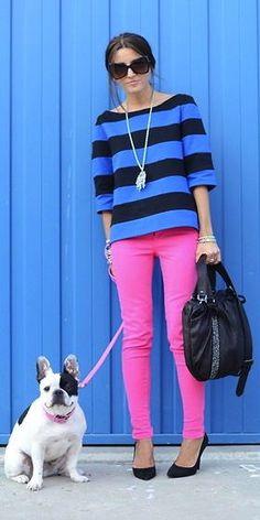 blue stripes / pink / black / adorable pup