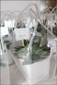 Bomboniere con Piante Grasse Wedding Gifts For Guests, Wedding Favors, Diy Wedding, Wedding Events, Wedding Day, Bomboniere Ideas, Wedding Doorgift, Cactus Wedding, Indian Wedding Cards