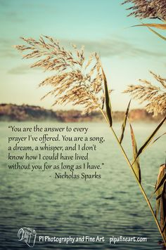 """""""You are the answer to every prayer I've offered. You are a song, a dream, a whisper, and I don't know how I could have lived without you for as long as I have."""" -  Nicholas Sparks"""