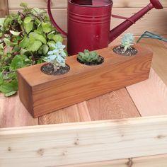 "Succulent 3 Hole Planter 4x4x16"" | Gronomics | MyPotsAndPlanters.com Galvanized Planters, Metal Wall Planters, Stone Planters, Wooden Planters, Hanging Planters, Cedar Planter Box, Planter Boxes, Natural Furniture, Plastic Planter"