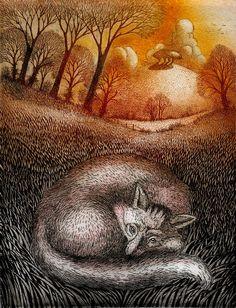 Ian MacCulloch ~ Resting Fox, etching