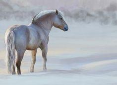 Norwegian Fjord Horse by Jammiska