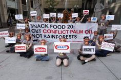 "BREAKING: Today we kicked off our ambitious new campaign to stop the destruction of Indonesia's rainforests for palm oil with an action outside the Chicago Board of Trade. We called out the Snack Food 20, companies that control some of America's favorite snack food brands and are using ""conflict palm oil"" in their products.  Now it's your turn: http://www.inyourpalm.org"