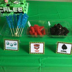 Minecraft Birthday Party Ideas | Photo 1 of 12 | Catch My Party
