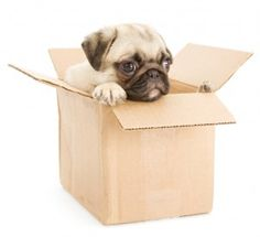 Moving Checklist: Tops Tip to Reduce Stress #moving