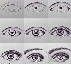 How to draw eyebrows and eyelashes drawing 그림 그리기, 눈 그림 и 예술 Bird Drawings, Cool Drawings, Drawing Sketches, Eye Drawings, Eye Sketch, Sketching, Drawing Birds, Drawing Artist, Realistic Eye Drawing
