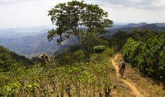 El Salvador Winter Shred Trip - Pinkbike