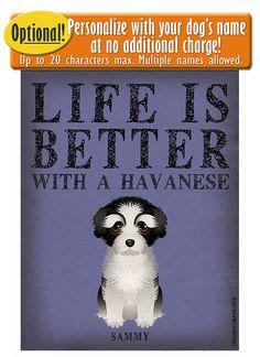 La vida es mejor con un arte Bichón Habanero por DogsIncorporated