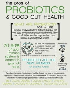 Probiotics are all the rage right now and for good reason! Try to get it through real food sources like sauerkraut, kimchi, and kefir. All that good bacteria helps fight disease, boost the immune system, and better your health overall! Natural Hemroid Remedies, Natural Add Remedies, Natural Remedies For Migraines, Holistic Nutrition, Nutrition Guide, Health And Nutrition, What Are Probiotics, Medical Esthetician, Breastfeeding Nutrition