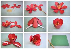 Bits of Paper: 3D Tulip Paper Flower