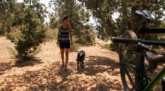 Pack for your next adventure with dog in tow. Here are some packing tips and products to consider before hitting the road.
