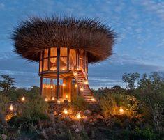 Kenya's Bird Nest is a breathtaking safari suite in the African wilderness