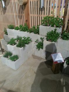 Raised bed idea. Could do this up against backyard retaining wall.