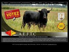 AEFTC | TORO CAMPO