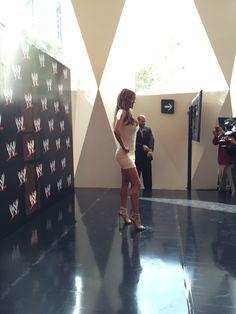 WWE  Evento de presentación