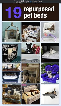 Really awesome repurposed pet beds!