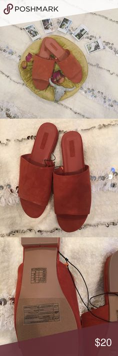 • Minimalist Single Strap Sandals • Size 8 minimalist rust orange single-strap sandals from Forever 21. Never been worn and selling because we have two of the same pair. Forever 21 Shoes