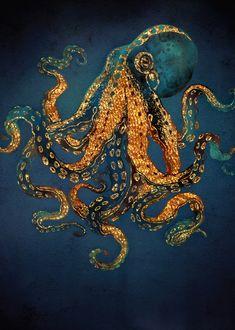 Underwater Dream IV by SpaceFrog Designs metal posters is part of Art painting Ocean - See amazing artworks of Displate artists printed on metal Easy mounting, no power tools needed Art Sketches, Art Drawings, Animals Tattoo, Octopus Painting, Underwater Painting, Octopus Artwork, Octopus Drawing, Ocean Underwater, Art Et Nature