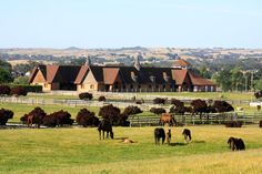 Paso Robles region of California - Where equine athletes come to rehab and train