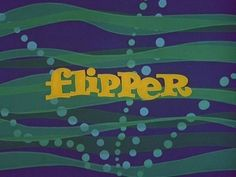 The tv show Flipper is an adaptation of the 1963 film Flipper starring Chuck Connors and Luke Halpin and its 1964 sequel. The tv series first broadcast on NBC from 1964 until 1967 with 88 episodes to its credit. Flipper, a bottlenose dolphin, is the companion animal of Porter Ricks' family, Chief Warden at fictional Coral Key Park and Marine  Preserve in southern Florida. Flipper is a wild dolphin and the companion animal of the Ricks family.