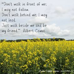 Don't walk in front of me, I may not follow Don't walk behind me, I may not lead, Just walk beside me and be my friend -Albert Camus