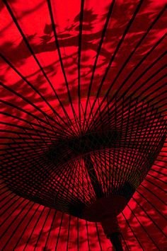 Cool picture of a traditional Japanese umbrella, Jurin-ji temple (十輪寺), Kyoto