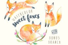 Sweet Foxes Watercolor Set by PaperSphinx on Creative Market