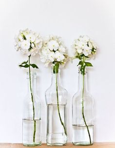 phlox can usually be sought in January, especially the white pink and purple varieties. A good option for your winter wedding. winter wedding florals flowers seasonal wedding bouquet.