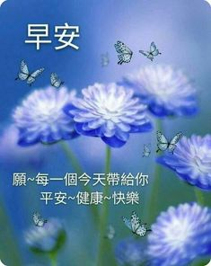 Good Morning Picture, Morning Pictures, Good Morning Wishes, Morning Images, Good Morning Quotes, Morning Greetings Quotes, Happy Day, Chinese Quotes, Greed
