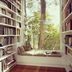 perfect place to read.
