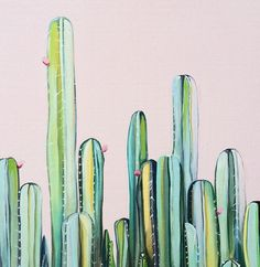 'Cactus Fields' original oil painting of cactus garden by Kate Jarman