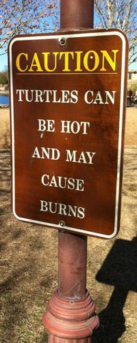 Yes, there are even #recreation #signs that warn against hot #turtles!