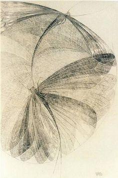 "pearl-nautilus: "" Illustration by Erika Giovanna Klien """