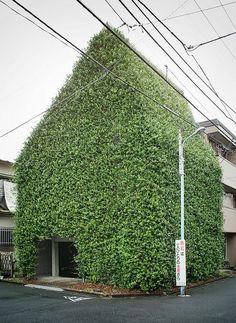 guen-k. green house in tokyo.