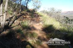Track Cam: Contouring along Section 1 of the Larapinta Trail. © Explorers Australia Pty Ltd 2013 Contouring, Trail, Gap, Country Roads, Australia, Explore, Exploring, Makeup Contouring
