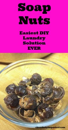 soap nuts - easiest DIY laundry solution ever #DIY #Laundry #soapnuts