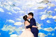 my aquarium wedding at Manila