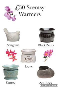£30 Scentsy Warmers check out the full range here https://kimberleygraham.scentsy.co.uk/