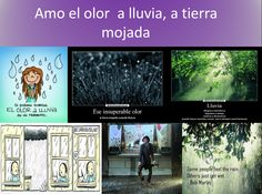 aroma a lluvia, lluvia, naturaleza, nature, olor a lluvia, olor a tierra mojada, rain smell, smell of rain, smell of wet earth