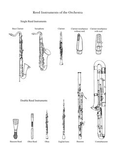 """The Reed Family"" : Drawings of instruments in the reed family by the Lancaster Symphony"