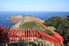 Red & Blue!  Innumerable Torii Gate Standing By The Sea