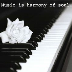 music is harmony of soul