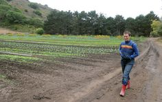 Lib at Large: Marin's Green Gulch, a pioneer in organic farming, celebrates 40 years - Marin Independent Journal