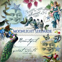 A beautiful set of romantic style extras designed to coordinate with the Moonlight Serenade scrapbook collection.