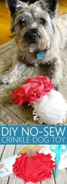 This DIY No-Sew Crinkle Dog Toy is so cute, and Jessica from Living La Vida Holoka is stopping by to teach us how to make it-so quick and easy!   http://mysocalledchaos.com/2017/05/diy-no-sew-crinkle-dog-toy.html