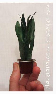 PLANETA PARCZUN: Recyclingowe kwiaty doniczkowe