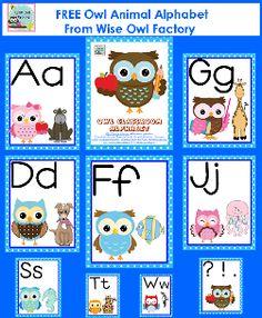 free owl animal alphabet classroom theme-small
